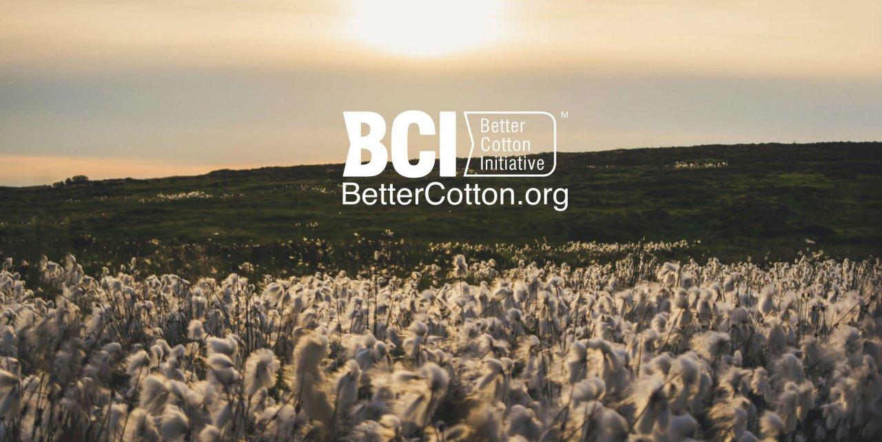 Wat is BCI-katoen en hoe duurzaam is het?